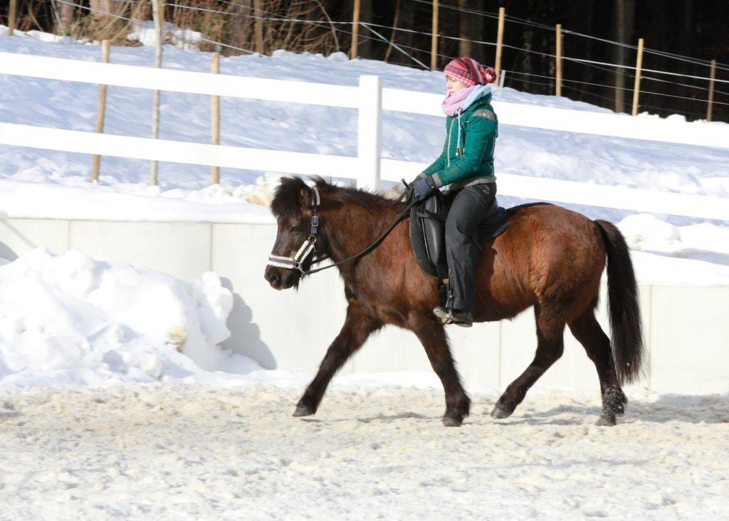 Sitzschulung für Reiter Lara Bauer